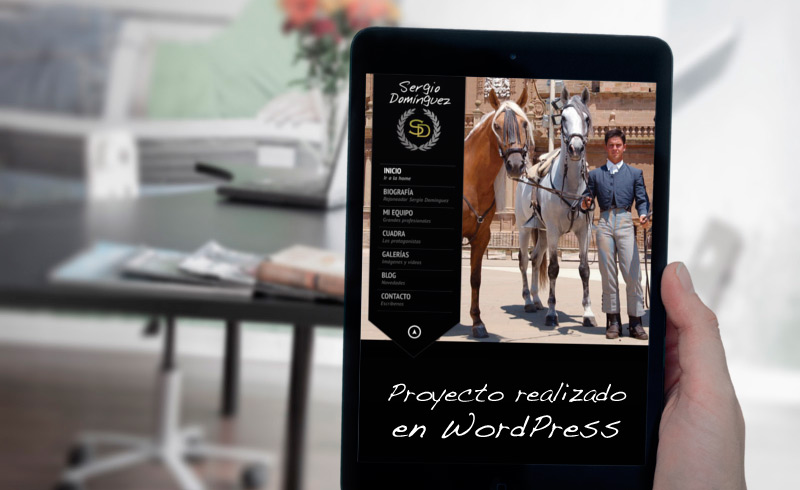 sergiodominguez-web