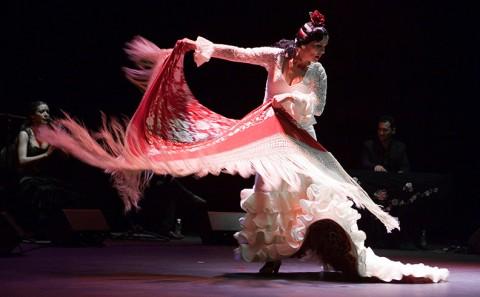 flamenknet
